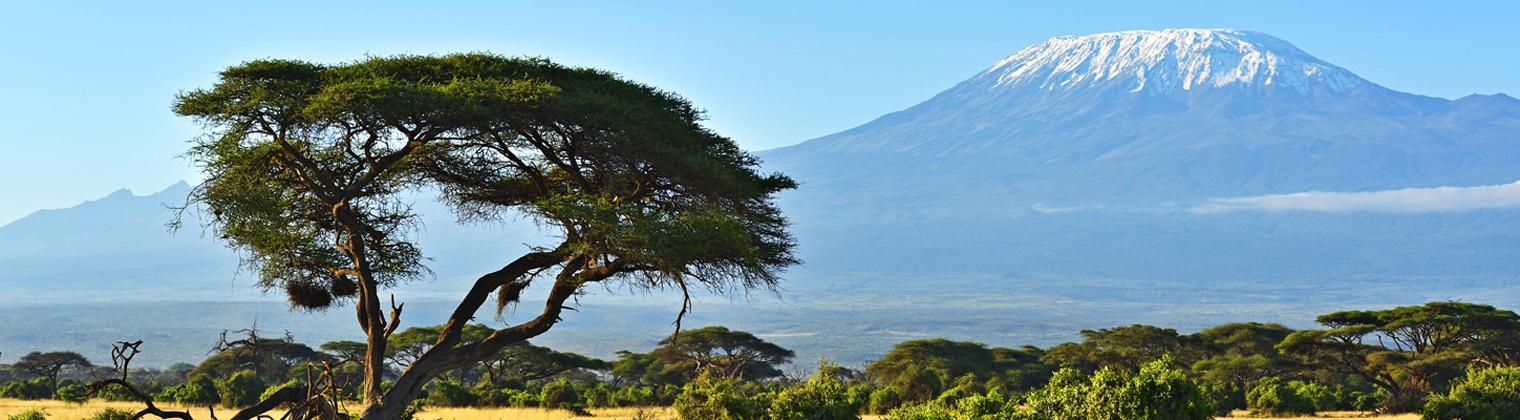 Afrika Kilimanjaro