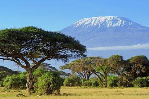 Bergreisen Kilimanjaro