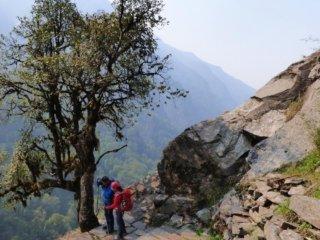 Nepal Trekking zum Annapurna BC