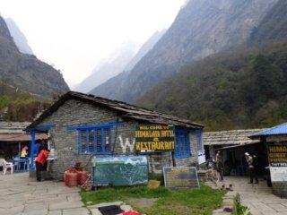 Nepal Trekking ABC Trek Lodges