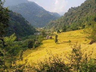 Nepal Trekking Mera-Peak Felder