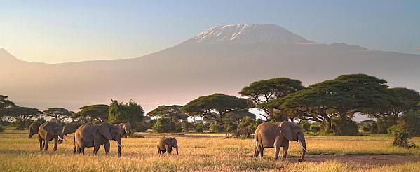 Kilimandscharo und Mount Meru