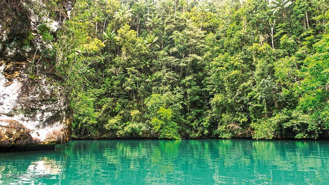 Raja Ampat Lagune