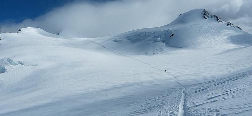 Signalkuppe 4.554 m